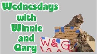 Wednesdays with Winnie & Gary 2018-03-14 thumbnail