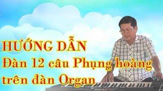 Hướng dẫn đàn 12 câu phụng hoàng trên đàn Organ