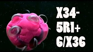 X34-5R1+6/X36