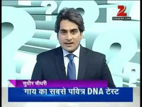 Benefits of desi cows, very well explained by Sudhir Chaudhary.. thumbnail