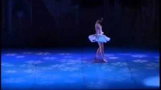 Sadie Brown Sugar Plum Fairy Variation