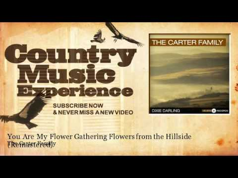 The Carter Family - You Are My Flower Gathering Flowers from the Hillside - Remastered mp3