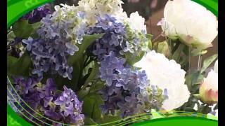 Салон цветов - Нижний Тагил(, 2011-11-03T13:36:29.000Z)