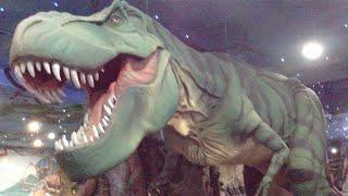 Живые Динозавры Dinosaurs at Moskov Zoo. Animals & fish.(Живые Динозавры Dinosaurs at Moskov Zoo Страшный, ужасный, опасный, ящер, живший в мезозойскую эру. Смотрите на одних..., 2015-07-20T09:34:37.000Z)