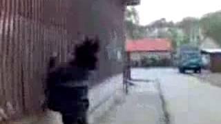 mečiara výstrek Jess Sean Cody Gay porno