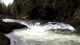 HD Video, Rainbow Falls, on the Chehalis River