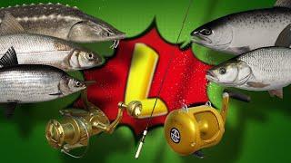 Level◦Русская рыбалка 4