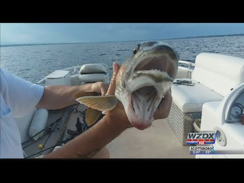 BJ The Web Guy - Upstate New York Woman Catches Fish With Two Mouths in Lake Champlain