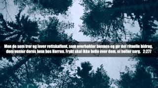 Surat Al-Baqarah (2:275 - 2:281) | سورة البقرة | Norsk Tekst