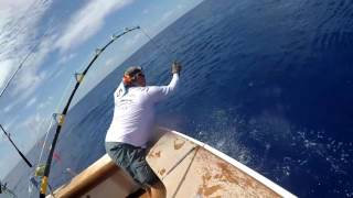 2017 Bermuda Big Game | Team Miss Magnolia | Blue Marlin