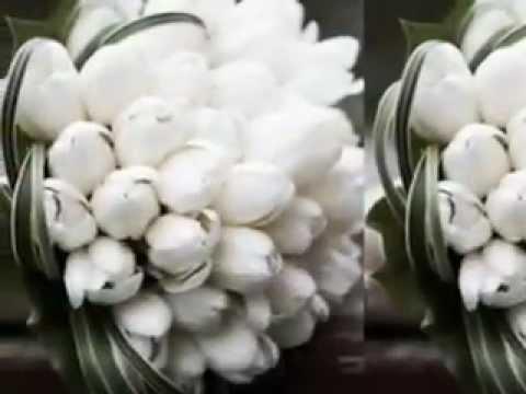 Almaz wedding decor/ Habesha white wedding reception decorations