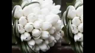 Almaz wedding decor/ Habesha white wedding reception decorations
