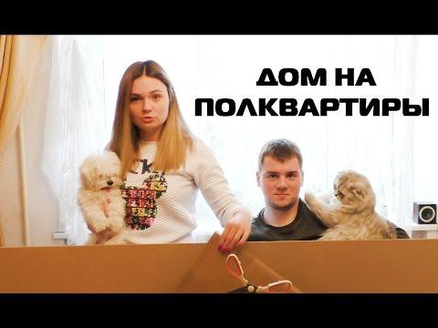 ОГРОМНЫЙ КАРТОННЫЙ ДОМ ДЛЯ ЖИВОТНЫХ В КВАРТИРЕ | серия 2