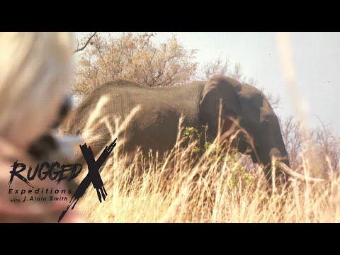 Elephant Hunt of Zimbabwe