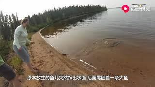 善良女子放生鱼儿,刚把鱼放进水中意外发生了,镜头记录全过程