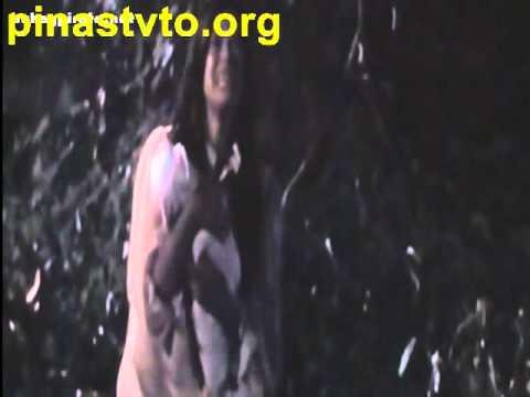 pinastvto.org.avi