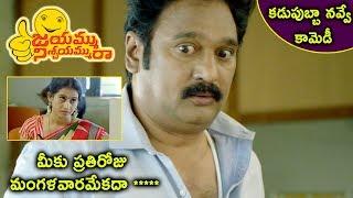 Jayammu Nischayammu Raa Movie Scenes - Meena Hilarious Punch to Krishna Bhagwan - Posani Hurts