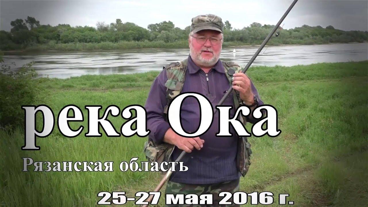 Рыбалка на Оке в Рязанской области в мае 2016 года (25-27.05.16)