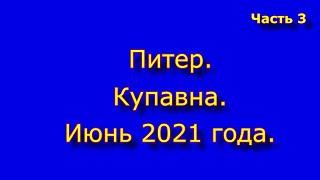 Питер. Купавна. Июнь 2021. Часть 3.