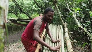 Building A Primitive Hammock Bed In the JUNGLE