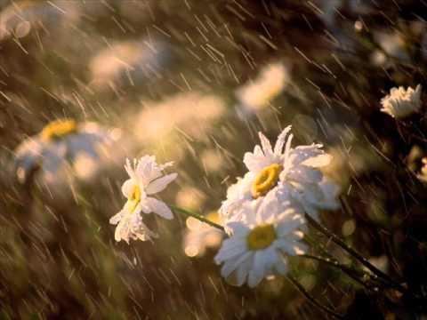 Sen En Güzel Baharın Yağmuru  [ Aşk Şarkıları 2015`de Dinle ] Yeni
