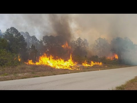 Brush fire comes dangerously close to Lehigh Acres homes