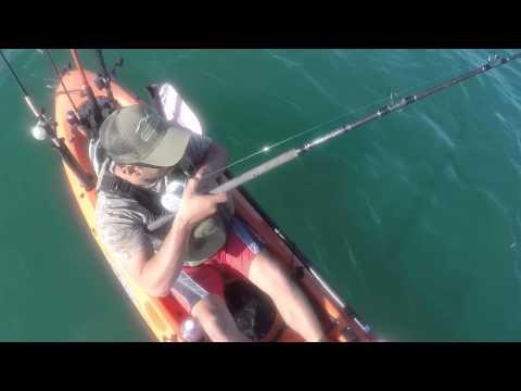 Kayak Fishing Halibut In Oceanside Ca