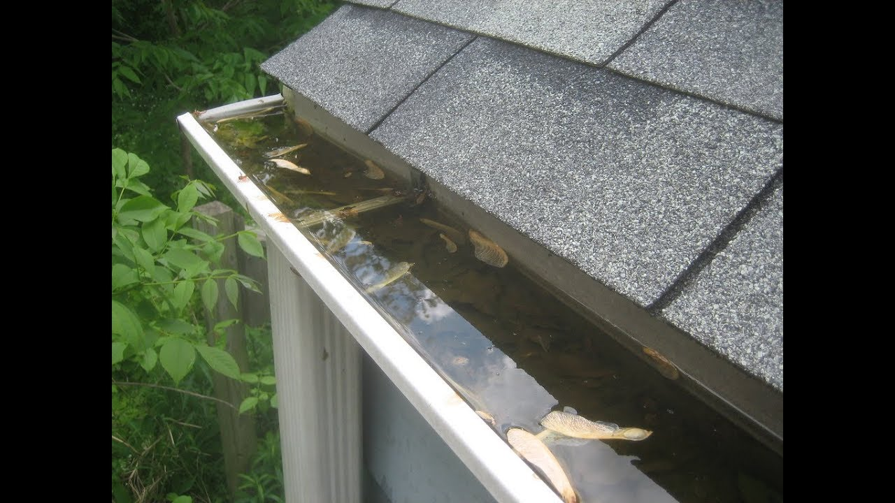 Top 10 Best Gutter Cleaning Tools Youtube