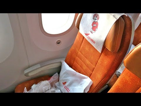 AIR INDIA FLIGHT REVIEW: B787 DREAMLINER FLIGHT AI381 SINGAPORE TO DELHI