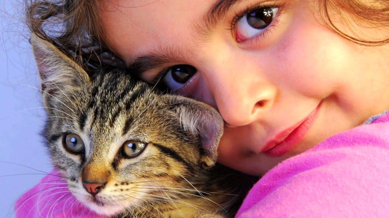 Cute Little Kitten Desktop Wallpapers Poesje Kom Maar Snel In Huis Youtube
