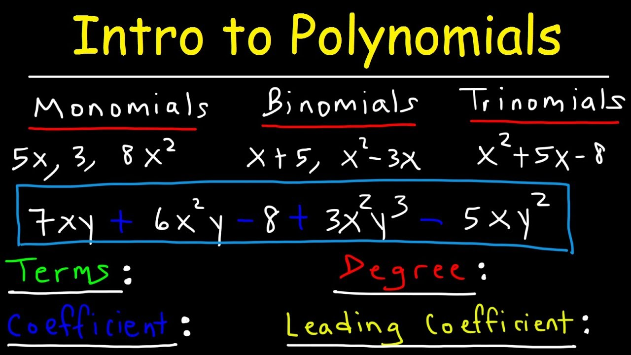 Download Polynomials - Classifying Monomials, Binomials & Trinomials - Degree & Leading Coefficient