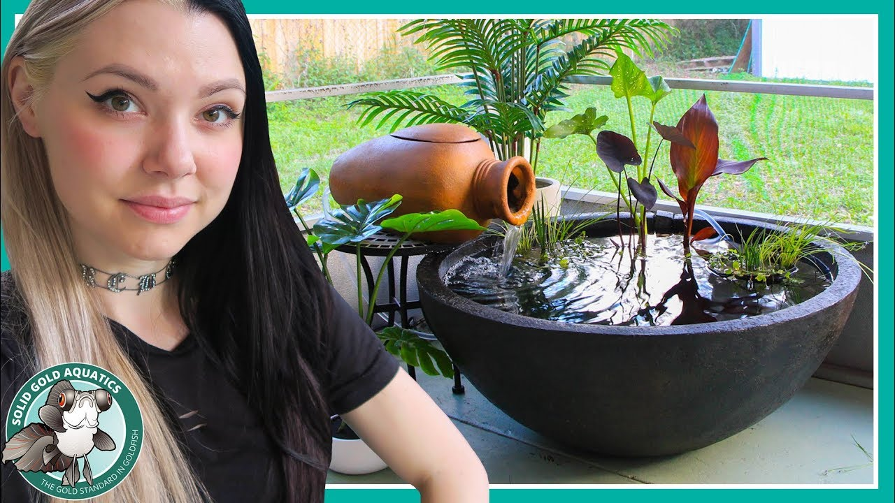 patio pond for fancy goldfish