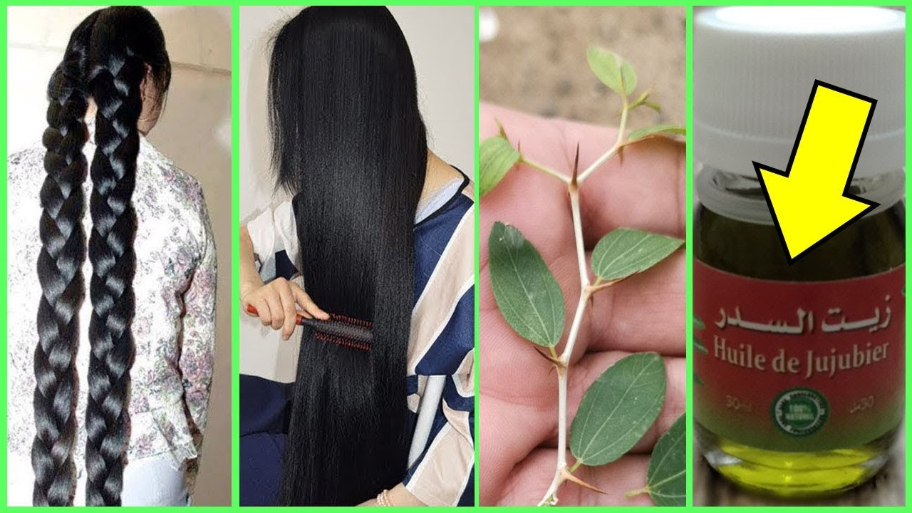 زيت السدر فوائده لاتصدق للشعر اطالة الشعر بسرعة الصاروخ تنعيم وترطيب وتكثيف الشعر من الجذور Youtube