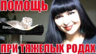 Укол кошке подкожно .Помощь при тяжелых родах у кошек и собак