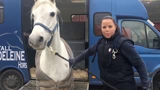 VLOGG l Hästleverans från Irland, Stall Madeleine El Hanafi thumbnail