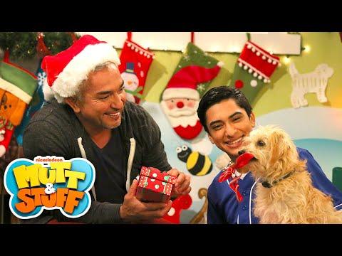 Mutt Stuff Christmas Dogs You