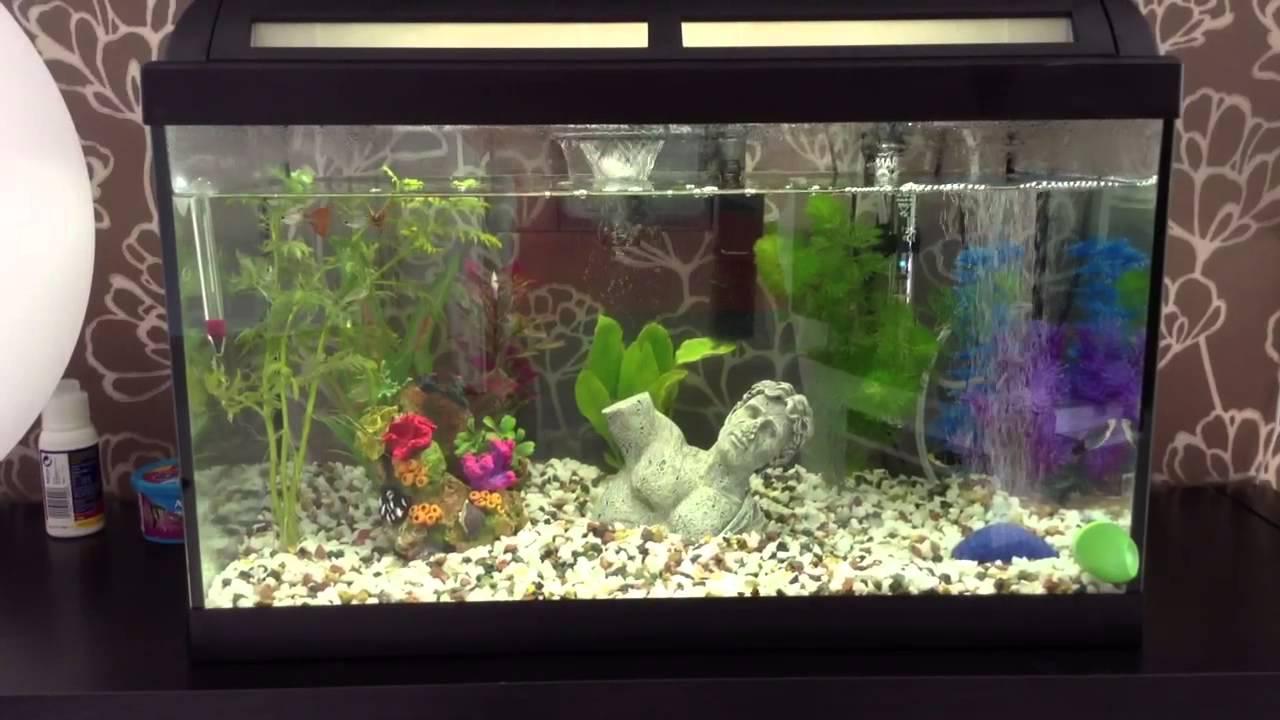 Marina style60 tropical aquarium youtube for Marina aquarium