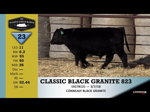 Classic Angus Ranch Lot 23