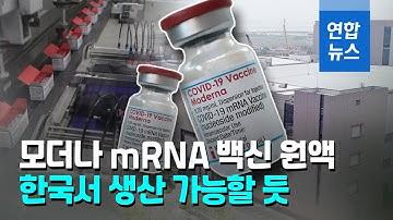 """모더나 관계자 """"한국서 완제 공정하는 mRNA 백신 나올듯"""" / 연합뉴스 (Yonhapnews)"""