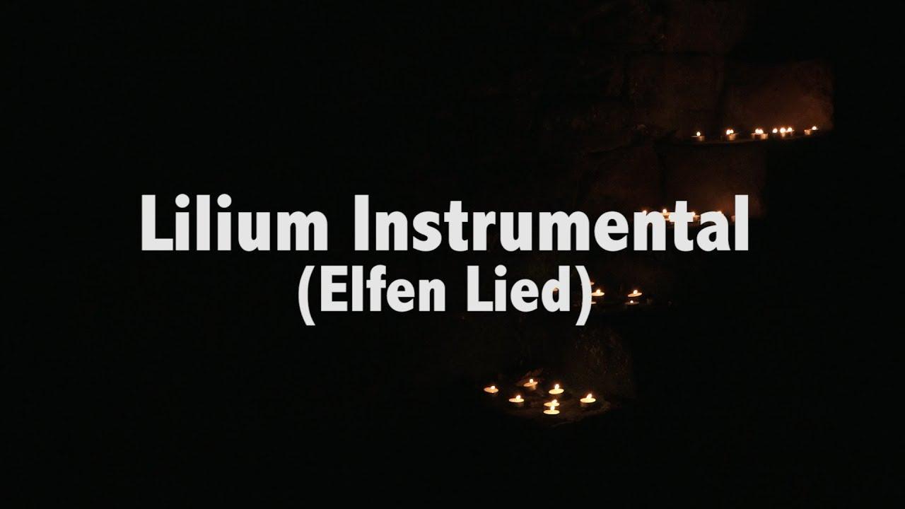 lilium instrumental