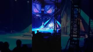2019 겨울왕국 디즈니 온 아이스-아이놀