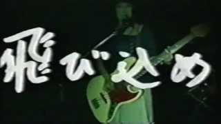 水中図鑑 - 夏への扉