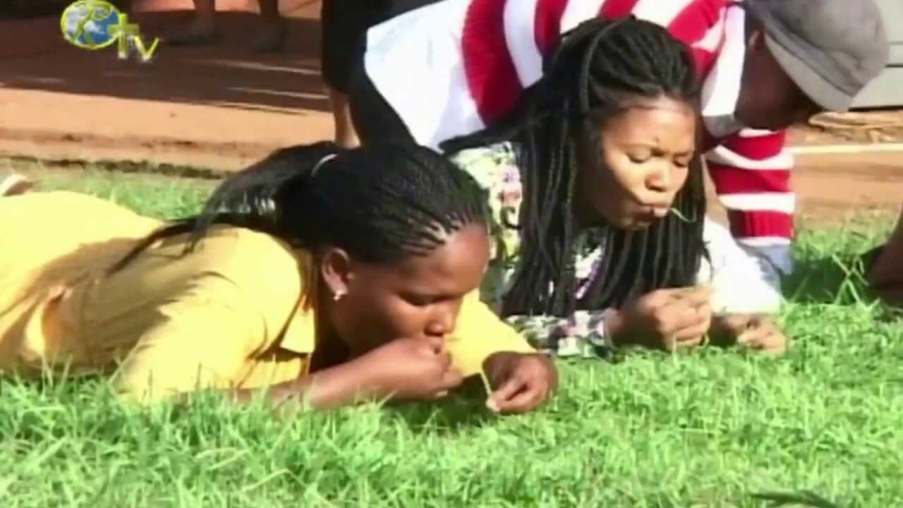 Download church people eating grass