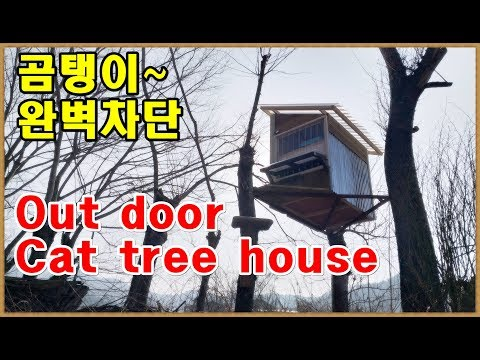 [DIY] Out door Cat tree house.Cat Shelter. 길냥이 급식소&쉼터를 나무위에 설치했다