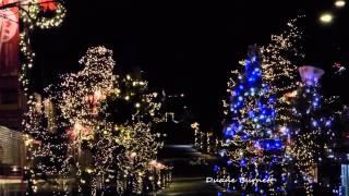 Christmas Sunshine Coast BC Sechelt 2014