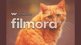 рыжий   кот    детская     песенка