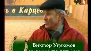 Виктор Угрюмов о конном спорте.