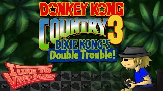 Donkey Kong Country 3 - For Better or Worse - VZedshows