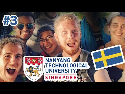 Meeting Other EXCHANGE STUDENTS 🇸🇬   Sweden 2 Singapore Vlog #3