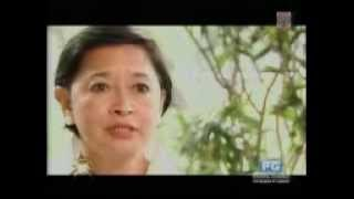 "The Discovered Mansion Of Gov. Josephine ""Nene"" Ramirez- Sato Part 2.MP4"
